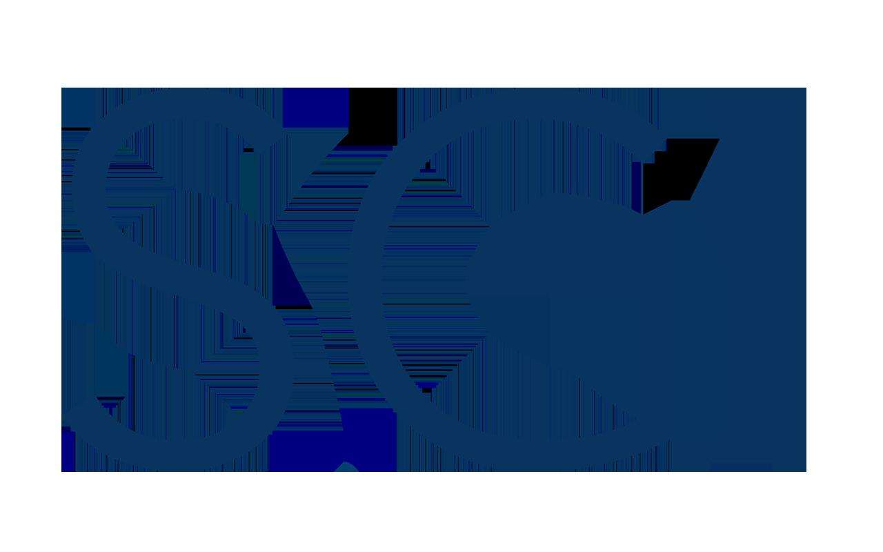 SGI Professional Services, Inc.